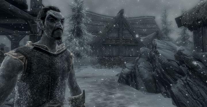 skyrim-frostfall