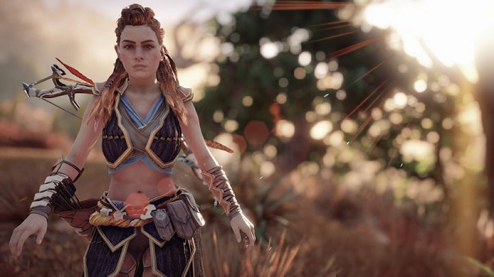6 Aloy Horizon Zero Dawn Lakebit