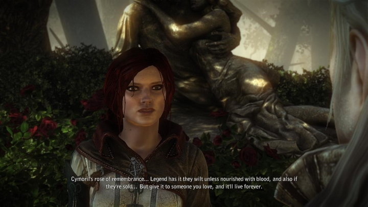 triss-rose-of-remembrance
