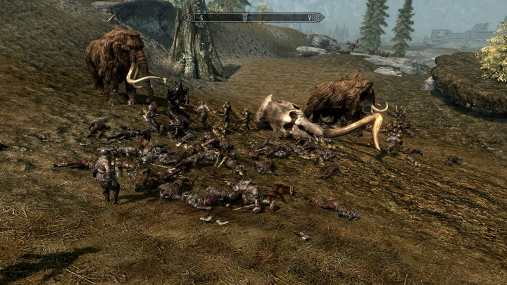 Skyrim Mods Crazy