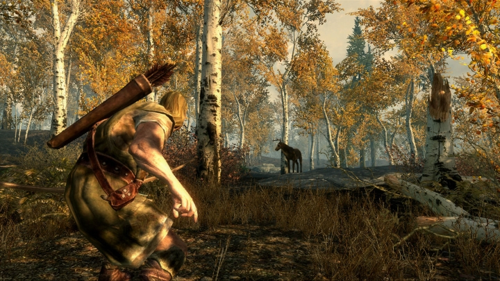 skyrim-sneaking-in-forest