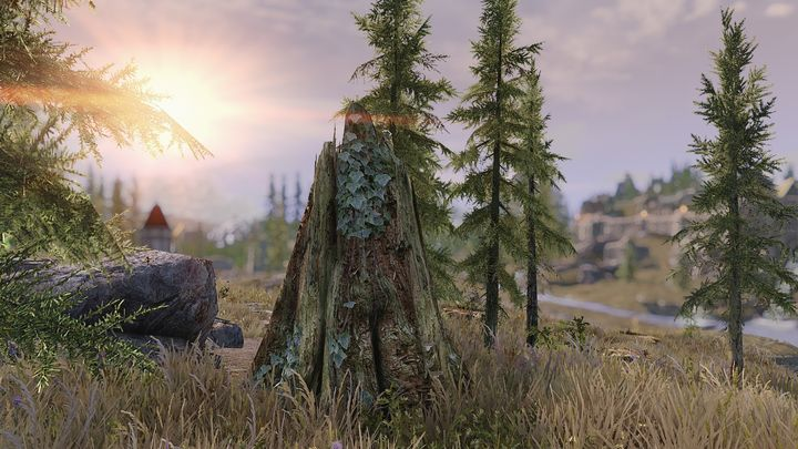 New graphics mod makes Skyrim's trees prettier to look at